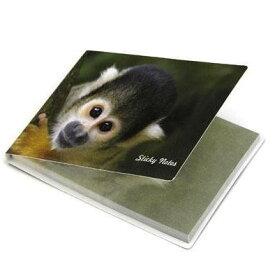 付箋メモ リスザル [Catseye]フセンモンキー・りすざる・猿・さる・サル