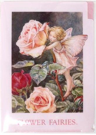 A5 クリアファイル ローズ2[Flower Fairies]フラワーフェアリー輸入ファイル・妖精