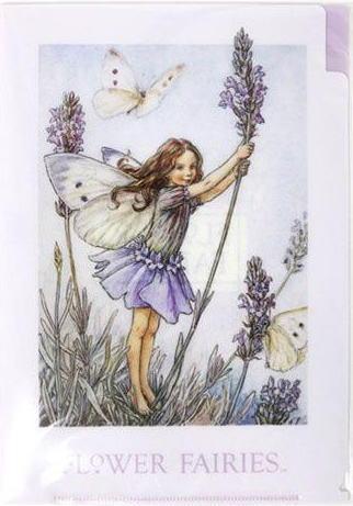 A5 クリアファイル ラベンダー2[Flower Fairies]フラワーフェアリー輸入ファイル・妖精