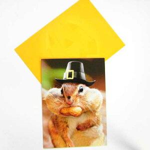 ハロウィーンカードL ナッツをほおばるリス[AVANTI]りすメッセージ・ギフトカード・グリーティング