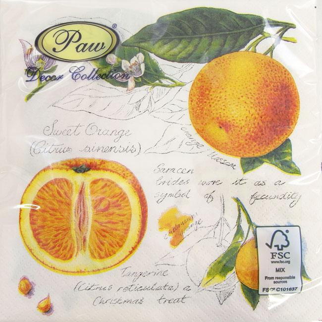 ペーパーナプキン[メール便OK] オレンジ柄[Paw]2枚入りペーパーナフキン・紙ナプキン・デコパージュ