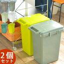 ゴミ箱 【2個セット送料無料】 ecoコンテナスタイル 45L おしゃれ 分別 ふた付き 分別スリム 45リットル 屋外 キッチ…
