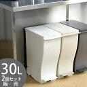 【ポイント10倍】【2個セット送料無料】 クード ゴミ箱 kcud スリムペダル 30L おしゃれ キッチン ふた付き スリム 屋…