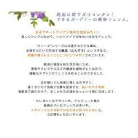 アイアンフェンス「フィーユ」ロータイプ【フェンスゲート扉アイアンガーデンフェンス】[22]