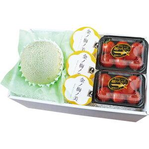 ★福井の夏セットアンデスメロン・越のルビー・ゼリー5-4【冷蔵】