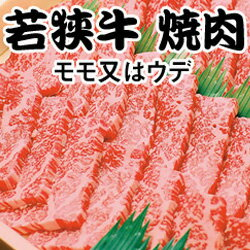 若狭牛 焼肉B21-6 【送料無料】和牛【同送不可】【福井 福井県 お土産】