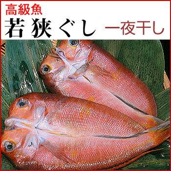 若狭ぐじの開き若狭ぐし( 甘鯛 )7−8【福井 お土産】【同送不可】