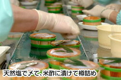 小浜丸海小鯛のささ漬2樽入小鯛の笹漬け【福井お土産】