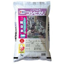 【平成30年度米】無洗米コシヒカリ3kg入【福井 福井県 お土産】
