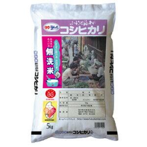 【令和元年度米】無洗米コシヒカリ5kg入【福井 福井県 お土産】