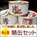鯖缶セット(味付缶・唐辛子缶・八丁味噌味)【楽ギフ_のし】【福井 お土産】