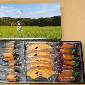 西洋菓子倶楽部福井自慢M18-5福井 お土産(おみやげ)