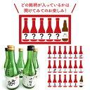 【送料無料】開けてのお楽しみ♪ぐいっと石川!地酒5本・地ビール1本セット