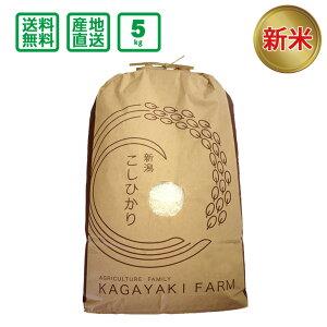 <新米予約>【令和2年産】新潟県産 コシヒカリ 5kg(精米) 【送料無料(一部地域除く)】