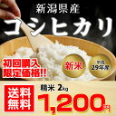 【お試し・数量限定!】【送料無料】平成29年産 新潟県産 コシヒカリ 2kg 初回限定
