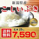 【送料無料】【平成28年産】新潟県産 こしいぶき 玄米 25kg【お中元 お歳暮にも!】