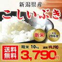 【送料無料】平成29年 新潟県産 こしいぶき 10kg【お中元 お歳暮に大人気♪】