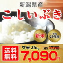 【送料無料】平成29年 新潟県産 こしいぶき 玄米 25kg【お中元 お歳暮に大人気♪】