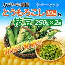 【予約受付開始】【送料無料】サマーセット(とうもろこし10本&枝豆250g×2袋)