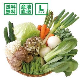 【送料無料(一部地域除く)】 産地直送 野菜セット Lサイズ【お歳暮・お中元にもどうぞ!】