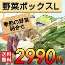 【送料無料】 産地直送 野菜セット Lサイズ 【お歳暮・お中元にもどうぞ!】