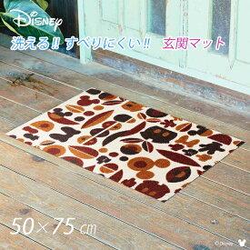 玄関マット 洗える おしゃれ ディズニー 玄関 マット ラグ Disney 50×75cm 玄関先マット ウェルカムマット ドアマット 室内 室外