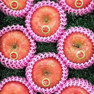 母の日 プレゼント ギフト ふじりんご 大玉 8玉 青森県産1玉 約3.5kg 糖度 13.5以上 1ケース フルーツ