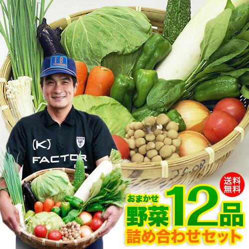 【送料無料】鹿児島からクール便でお届け「九州産 /10品 野菜セット詰め合わせ」【クール便】