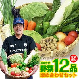【送料無料】九州 野菜セット 詰め合わせ10品プラス2品 鹿児島クール便