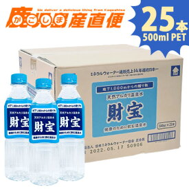 財宝温泉 500mlPET×25本 1ケース 天然水 温泉水 ミネラルウォーター 水 軟水 ペットボトル