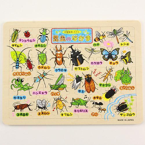 【メール便(ネコポス)不可】木製パズル 昆虫の仲間