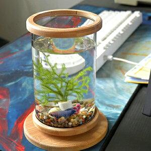 ミニ水槽 観葉植物の鉢 アクアリウム 水草ガラス水槽 円柱 丸形 小さな熱帯魚 ポット 容器 ミニ水槽 かわいい 小さい おしゃれ 約15cm ハイドロカルチャー用 エアプランツや苔の栽培 ボトル