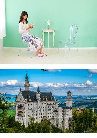 クリア透明チェア椅子ダイニングチェアー素材ポリカーボネートでエレガンスなヨーロピアン風フォルムのチェア猫脚アンティーク風