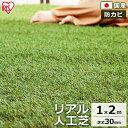 リアル人工芝 IP-3012人工芝 1m×2m 国産 人工芝生 芝生 芝マット アイリスオーヤマ 人工芝マット 芝生マット アイリ…
