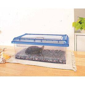 クリアビュー飼育ケース浅型 CC-430L クリアブルー 昆虫 ペット用品 ペットと暮らす 飼育 生活用品 アイリスオーヤマ 新生活