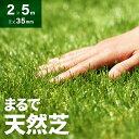 芝生マット リアル ガーデニング ガーデン 人工芝 ロール ロールタイプ 2m×5m ベランダ テラス バルコニー リアル人…