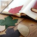 SIWA(シワ)葉っぱのしおり 10枚セット 栞 ブックマーク 本 和紙 紙和 ナオロン 日本製 国産 日本産 耐久性 軽い シ…
