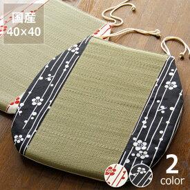 い草馬蹄クッション「小梅」(40×40cm)