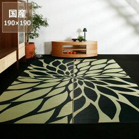 い草 ラグ い草ラグ い草カーペット「ダリア」(190×190cm)