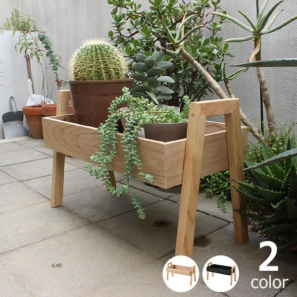MERCROS(メルクロス)ボタニカルツールシェルフ BOX H8.5cmプランターラック ディスプレイ 植物飾り棚 花台