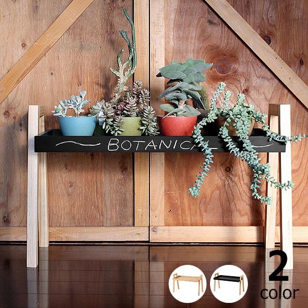 MERCROS(メルクロス)ボタニカルツールシェルフ BOX H3cmプランターラック ディスプレイ 植物飾り棚 花台