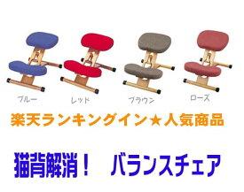 送料無料 プロポーションチェア キッズ プロポーションチェア 補助クッション付き 宮武 ch-88w クッション プロポーションチェアー バランス チェア バランスチェア 子供 学習椅子 バランスクッション バランスチェア 姿勢が良くなる 椅子(セール)