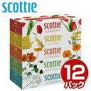 ボックスティッシュ まとめ買い 送料無料 スコッティ (SCOTTIE) ティッシュペーパー 320枚(160組)5箱×12パック(60箱)…