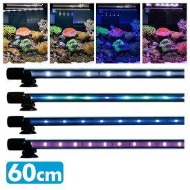 ゼンスイ アンダーウォーターLEDスリム 60cm 水槽用照明 LEDライト 鑑賞魚 熱帯魚 アクアリウム アクセサリー 【送料無料】