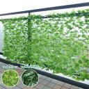 グリーンフェンス リーフラティス(約100×200cm) LLH-12C/LLS-12C グリーンフェンス 緑のカーテン グリーンカーテン リーフフェンス 目隠し 簡単設置 山善/YAMAZEN/ヤマゼン