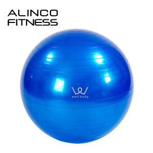 アルインコ(ALINCO) エクササイズボール(65cm) エアポンプ付 EXG025A バランスボール ヨガボール バランス運動 ストレッチ運動