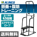 アルインコ(ALINCO) マルチ懸垂マシン FA917 懸垂マシーン 器具 ぶら下がり健康器 ぶらさがり健康器 シットアップベンチ 【送料無料】