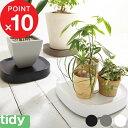 『レビュー投稿で今治タオル他』tidy / ティディ「Plantable(プランタブル)」 キャスター付き鉢皿 ブラック ブラウ…