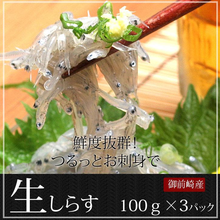 《静岡県駿河湾産 生しらす》お刺身用〈100g×3パック〉 無料ギフト包装・のし お歳暮 おためし お試し 特産