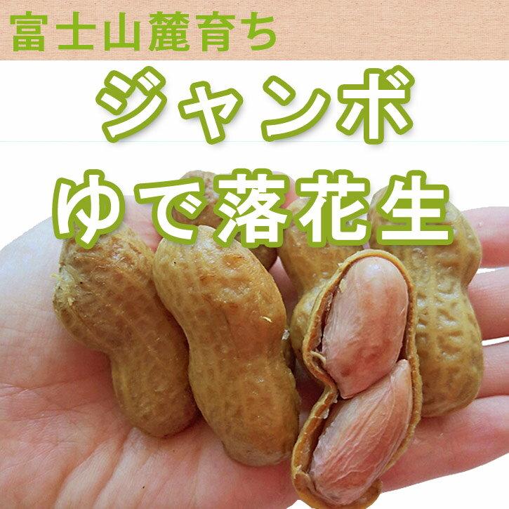 《ジャンボゆで落花生》〈400g〉静岡県産 富士山麓ですくすくと育った甘みが強くてほっくり柔らか無料ギフト包装・のしP16Sep15